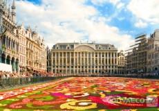 Brusela, Belgica